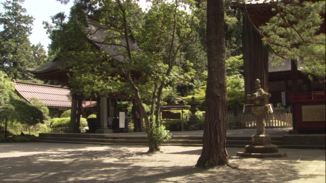 tall trees surround the traditional japanese buildings of a shinto shrine. - pagode stock-videos und b-roll-filmmaterial