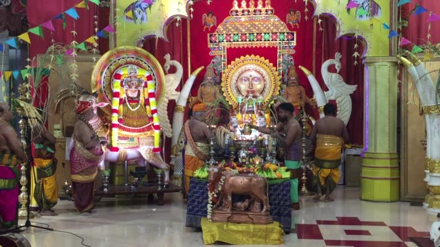 tamil hindu priests perform special prayers honouring lord surya during the thai pongal festival at a hindu temple in ontario, canada. the tamil... - harvest festival stock videos & royalty-free footage