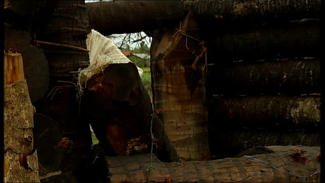 vidéos et rushes de tamil tigers on retreat government troops / destroyed tamil tiger stronghold more of men along in trailer pulled by tractor / destroyed wooden... - tôle