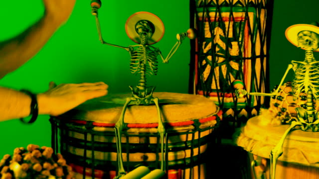 tamtam party with skeleton, mardi-gras - new orleans mardi gras stock videos and b-roll footage