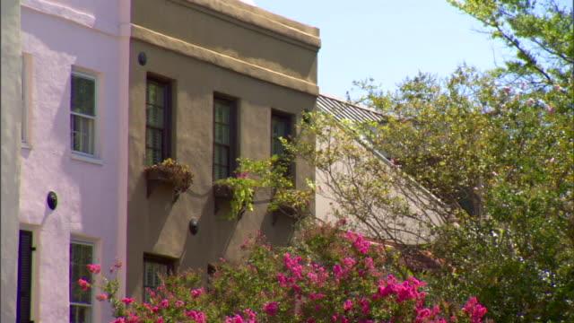 Tan row house w/ windows boxes flowering tree top FG