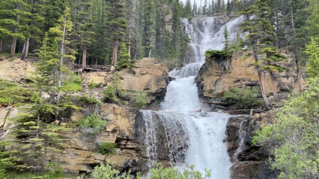 tangle creek falls, located on icefields parkway, banff national park, alberta, canada - maligne river stock videos & royalty-free footage