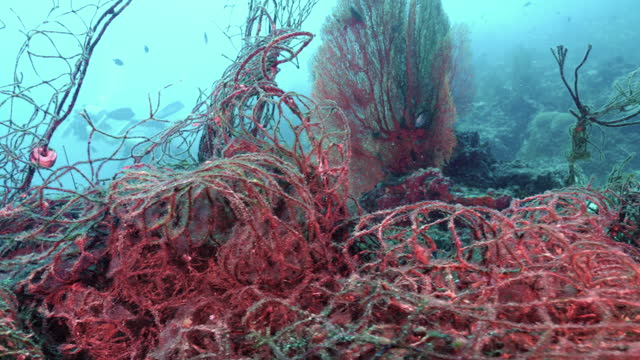tangled ghost net underwater near scuba divers - andaman sea stock videos & royalty-free footage