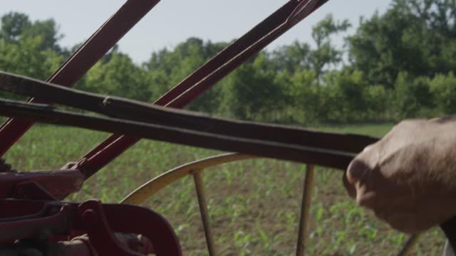 tanned farmer holding reins of plow - 手足点の映像素材/bロール