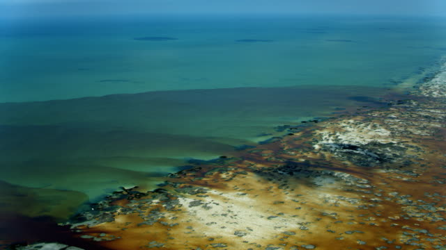 tannins flow into gulf of mexico at celestun - costa caratteristica costiera video stock e b–roll