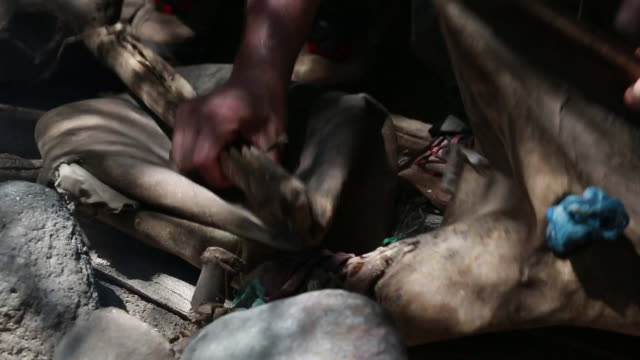 vidéos et rushes de tanzanian bellows cu - wiese