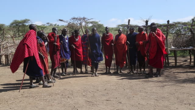 tanzania,ngorongoro conservation area (nca),masai men performing high jumps - grüßen stock-videos und b-roll-filmmaterial
