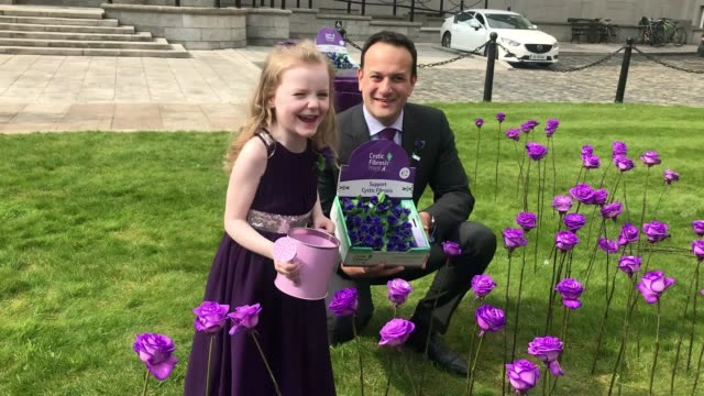 taoiseach leo varadkar launches the anual 65 roses fundraising day in dublin with ruth forster, who has cystic fibrosis and cystic fibrosis ireland... - cystic fibrosis stock videos & royalty-free footage
