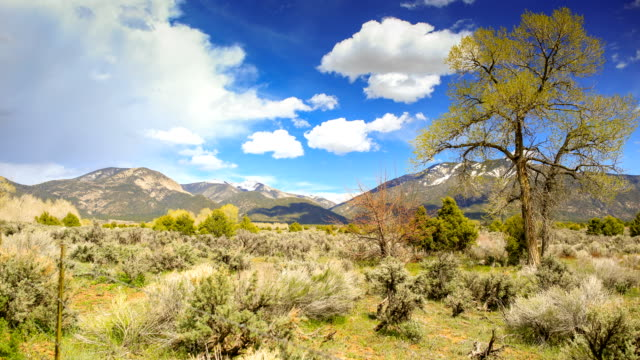 taos, new mexico - new mexico stock videos & royalty-free footage