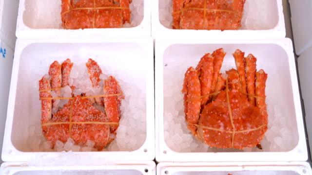 tarabagani alaskan king crab in japanese fish market, sapporo, hokkaido, japan - crab stock videos & royalty-free footage