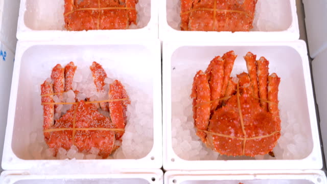 vídeos de stock e filmes b-roll de tarabagani alaskan king crab in japanese fish market, sapporo, hokkaido, japan - edifício de restauração
