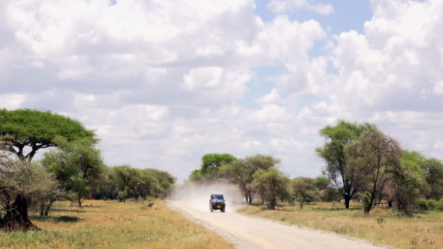 tarangire national park, landscapes and misc. - tanzania stock videos & royalty-free footage