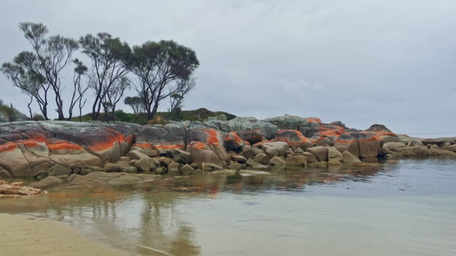 tasmania bay of fires skeleton bay australia 4k video - boulder rock stock videos & royalty-free footage