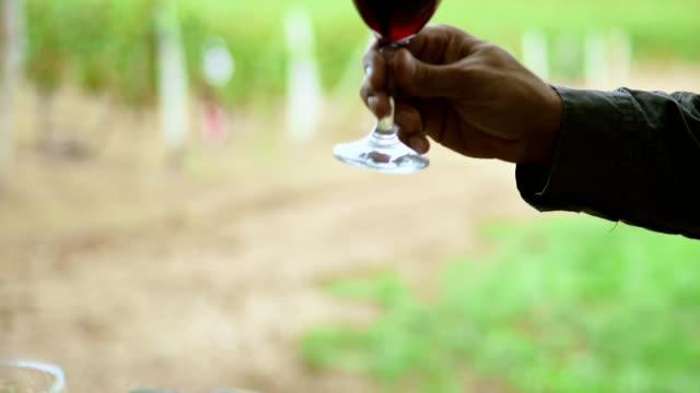 vidéos et rushes de dégustation de vins - serbie