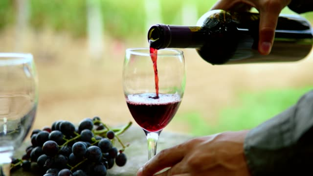 tasting wine - wine stock videos & royalty-free footage