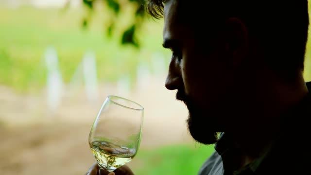 vidéos et rushes de dégustation de vins - goûter