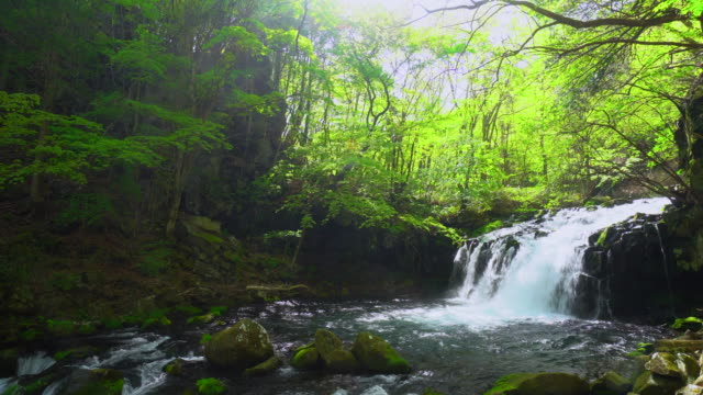 tateshina waterfall - non urban scene stock videos & royalty-free footage