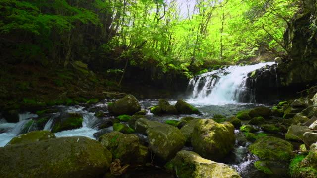 tateshina vattenfall - plusphoto bildbanksvideor och videomaterial från bakom kulisserna