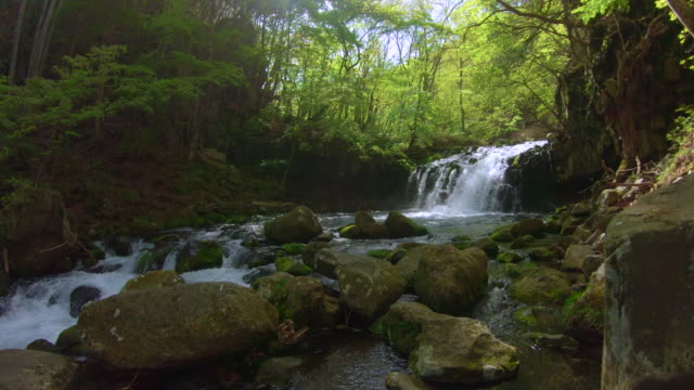 vídeos de stock, filmes e b-roll de tateshina cachoeira - plusphoto