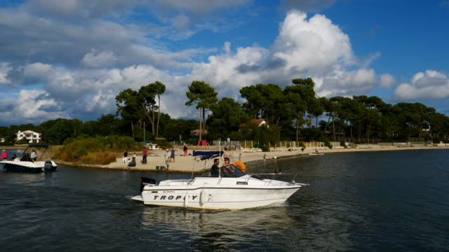 taussat, gironde,nouvelle aquitaine, france - gironde stock videos and b-roll footage