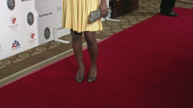 tayna chisolm at the 29th annual the gift of life gala at the hyatt regency century plaza hotel in beverly hills, california on may 18, 2008. - hyatt regency stock videos & royalty-free footage