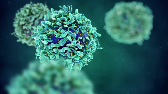 t-cell medical illustration - biological cell stock videos and b-roll footage