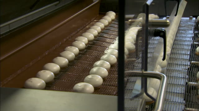 tea cakes being produced in a factory - unhealthy eating stock videos & royalty-free footage