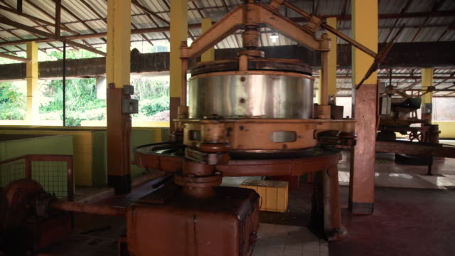 tea factory at sri lanka. spinning machine crushes the leaves - svart te bildbanksvideor och videomaterial från bakom kulisserna