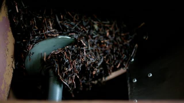 vidéos et rushes de usine de thé - thé noir