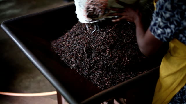 tea factory - drying stock videos & royalty-free footage