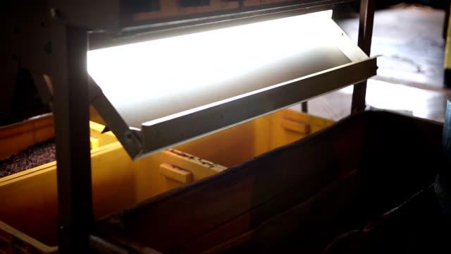 tè di fabbrica - sezione parziale video stock e b–roll