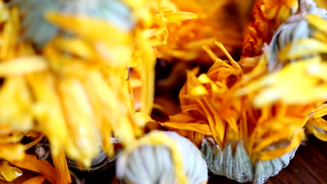 Tea Marigold. Collage.
