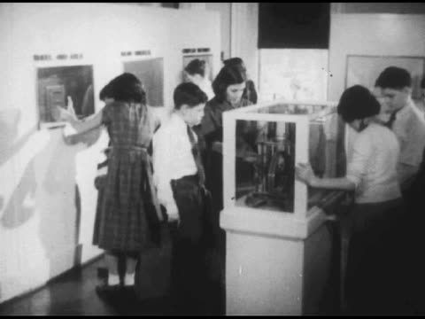 vídeos de stock, filmes e b-roll de / teacher talks to two young boys / woman exits the room / children wandering through museum displays / close shots as they survey various displays;... - 1951