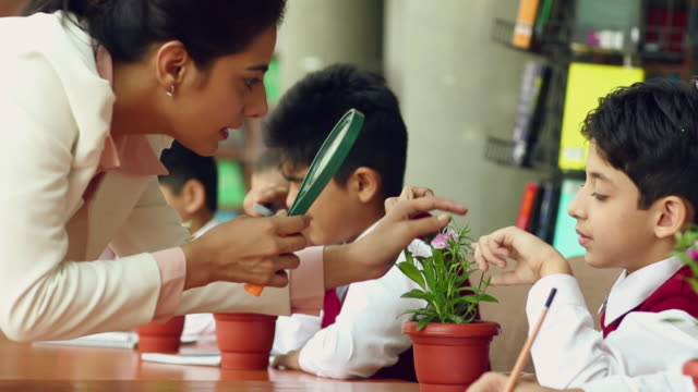 Teacher teaching plant life to school students, Noida, Uttar Pradesh, India