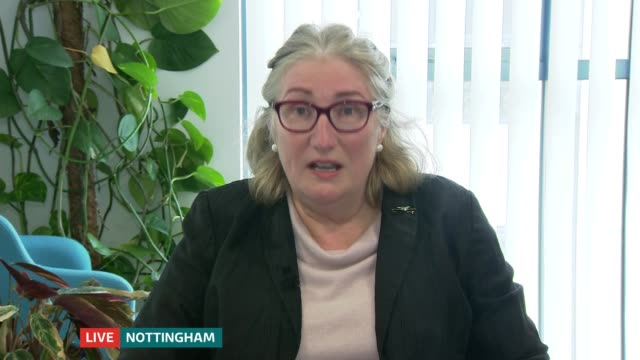 naht teaching union wants government to encourage more men into early years teaching england nottinghamshire nottingham / london gir int sally bates... - nottinghamshire stock videos & royalty-free footage