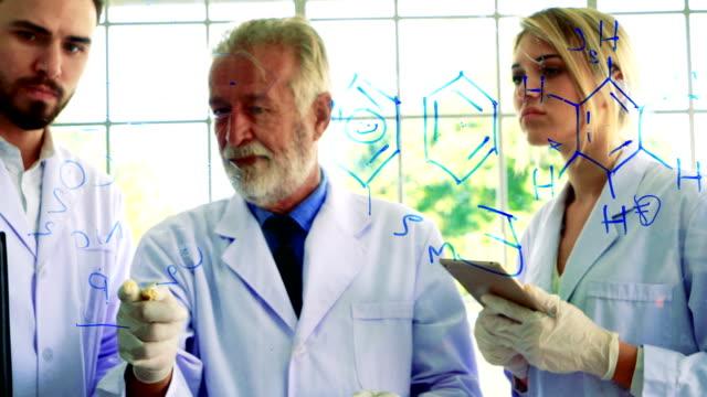 vidéos et rushes de équipe de chimistes s'inspire avec confiance formule conseil transparent - formule chimique