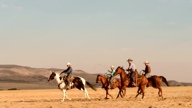 team of cowboys riding fast horses - appaloosa stock videos and b-roll footage