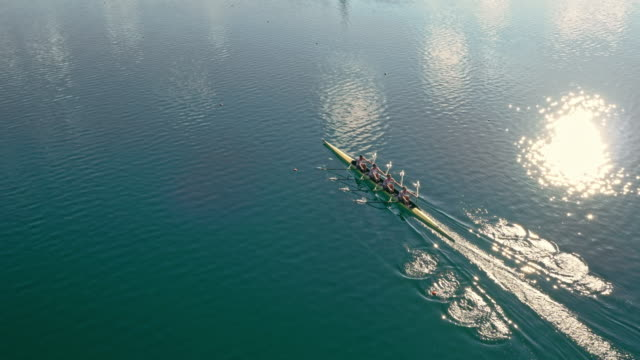 aerial team of four athletes in a quad scull moving across a lake in sunshine - rowing stock videos & royalty-free footage