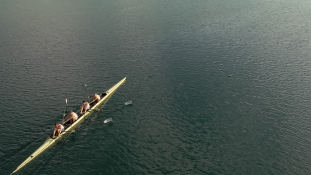 aerial team of rowers gliding on a lake in a coxless four on a sunny day - oar stock videos & royalty-free footage