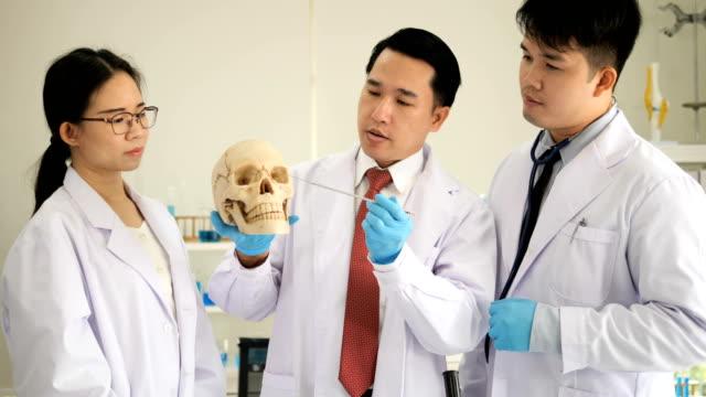 Team von Wissenschaftlern untersucht Modell des menschlichen Körpers