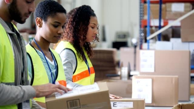 vídeos y material grabado en eventos de stock de equipo de trabajadores del almacén distribución jóvenes mirar paquetes antes de enviar hacia fuera - fila arreglo