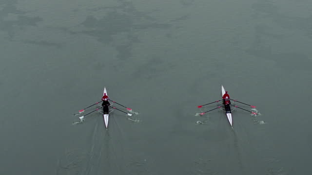 ws ha tu teams sculling on potomac river / washington dc, usa - sculling stock videos & royalty-free footage