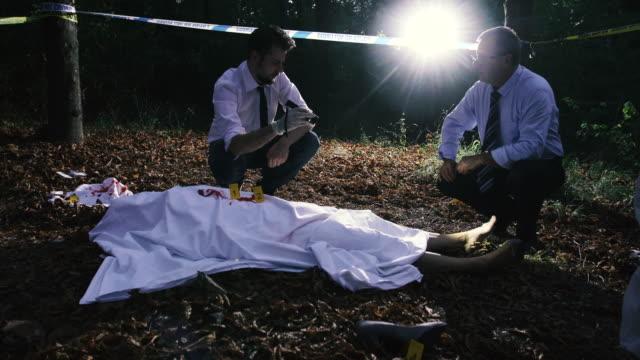 Teamwork at the crime scene 4K