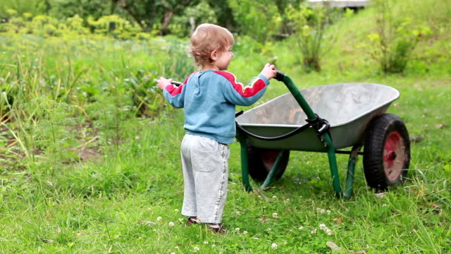 teamwork - children pushing a wheelbarrow in the backyard - pushing stock videos & royalty-free footage