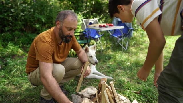 vídeos y material grabado en eventos de stock de trabajo en equipo en picnic - perro cazador
