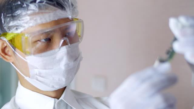vídeos de stock e filmes b-roll de technician qc microchip in the - silício