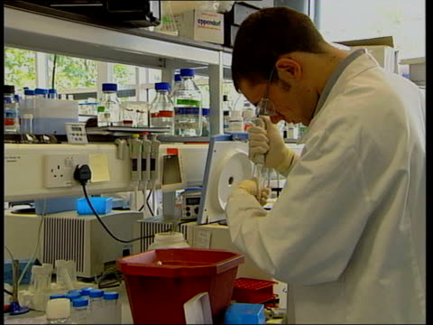 technician working in laboratory bottles on shelf in laboratory - francis crick stock videos & royalty-free footage