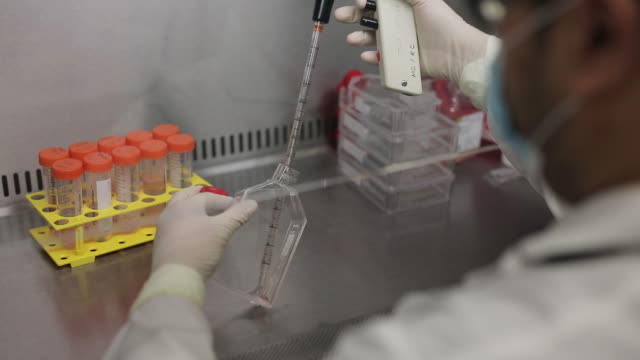 technicians at a laboratory at the university of hong kong in hong kong, china, on friday, march 20, 2020. the number of infections has more than... - technician stock videos & royalty-free footage