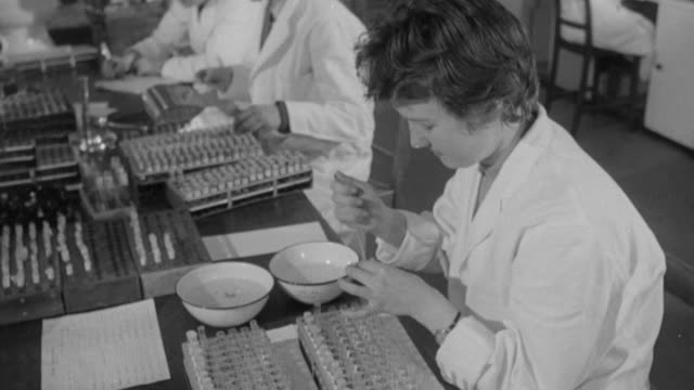 1958 montage technicians testing blood at a regional national blood transfusion service center / united kingdom - 1958年点の映像素材/bロール