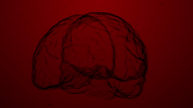 vídeos de stock, filmes e b-roll de technology human brain scan - stock video - lóbulo ocipital